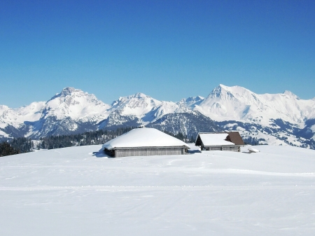 Winterplausch in Zweisimmen - Gstaad Mountain Rides