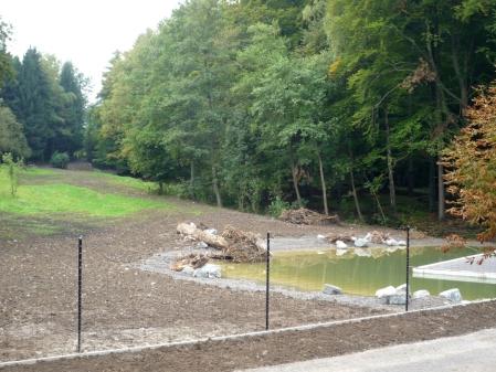 Die neue Schauanlage der Elche mit Biotop im Wildnispark Zürich
