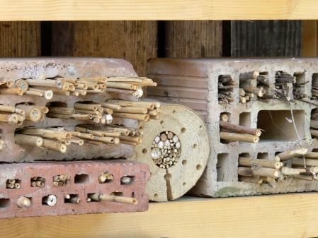 Rund um das Besucherzentrum in Sihl-wald sind verschiedene Nisthilfen für Wildbienen aufgestellt.