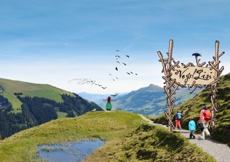 Die Vogellisi-Welt wächst