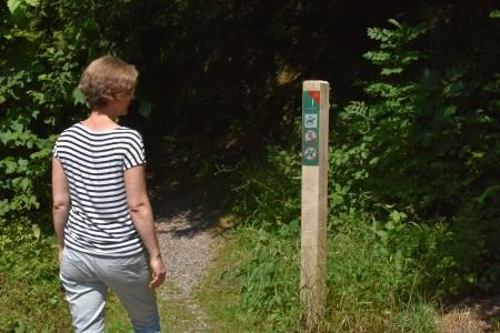 Bildlegende: Am Wegrand im Sihlwald ist die neue Schutzgebietsmarkierung auf Holzpfosten angebracht. (Bild Wildnispark Zürich)