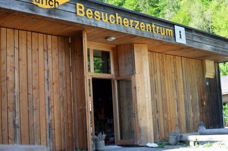 Naturmuseum öffnet mit Jubiläumsausstellung